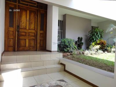 San Jose, 12 Rooms Rooms,5 BathroomsBathrooms,Casa,Alquiler,1115