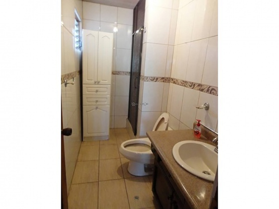 San Jose, 12 Rooms Rooms,5 BathroomsBathrooms,Office,Alquiler,1115