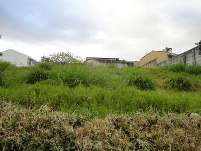 Guayabos, San Jose, ,Terreno,Venta,1164