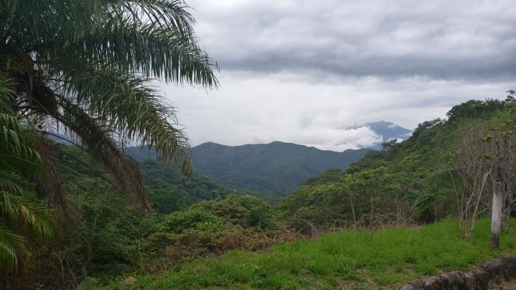 Alajuela, ,Terreno,Venta,1198