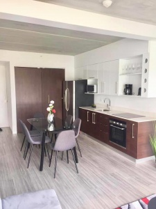 San Pedro, San Jose Barrio Dent, 1 Bedroom Bedrooms, ,1 BathroomBathrooms,Apartment,Alquiler,1332
